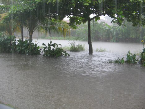 Torrential Rain And Flood